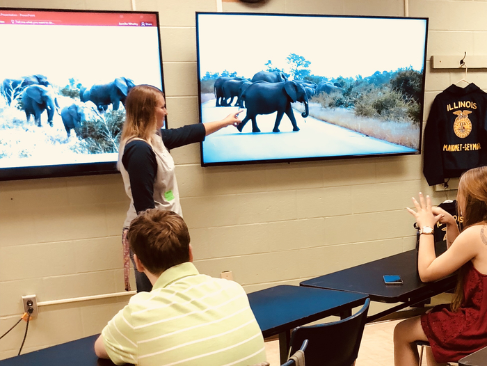 Showing students about how to tell if an elephant is left or right handed