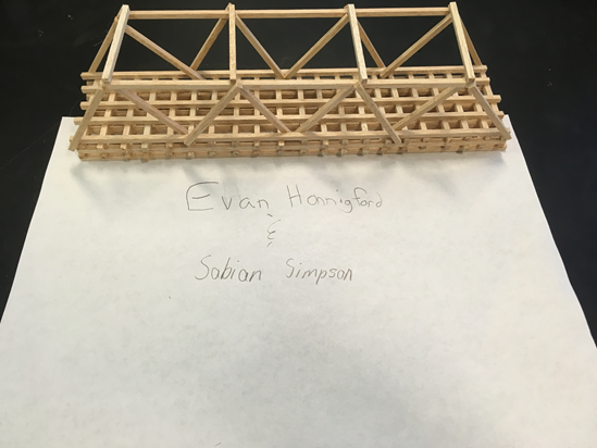 8th Grade Science Bridge Project