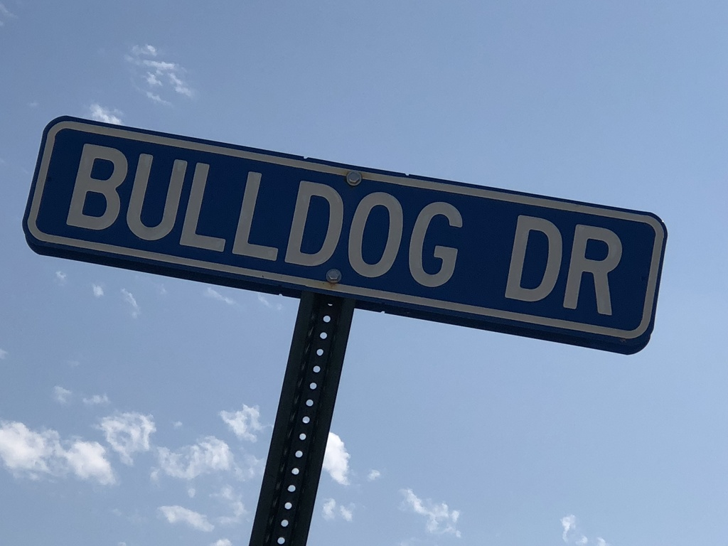 bulldog ave